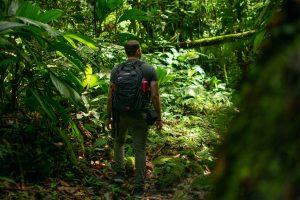 Read more about the article Organiser un séjour autour de l'écotourisme